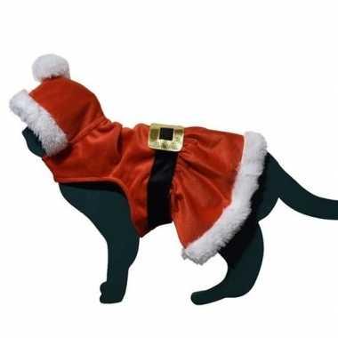 Kerstman pakje kostuum voor katten