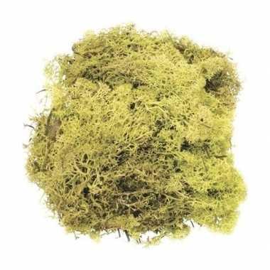 Kerststukje/herfststukje mos lichtgroen 50 gram