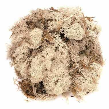 Kerststukje/herfststukje mos naturel 50 gram