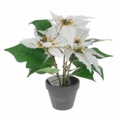 Kunstplanten witte kerststerren met pot 30 cm
