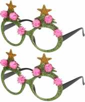 2x stuks kerstaccessoires groene kerstbrillen voor dames en heren