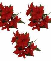 3x bosje rode kerststerren 30 cm