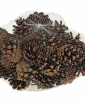 Decoratie dennenappeltjes bruin 300 gram 5 cm herfststukje kerststukje maken